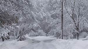 Michigan Snowfall Totals For Winter Storm Stella