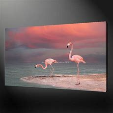 Flamingos Premium Quality Canvas Picture Wall Art Oil Paintings Alibaba Express Large Wall