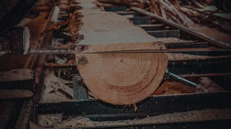 wood dust exposure prevention sawmills control