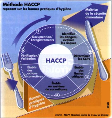 cuisine collective emploi haccp cuisine ziloo fr