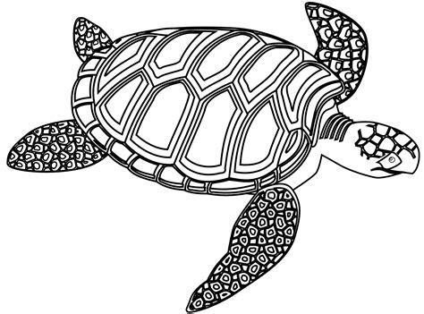 turtle clipart black and white turtle clip black and white clipart panda free