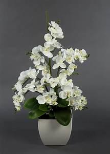 Künstliche Orchideen Im Topf : orchideen arrangement wei im wei en dekotopf ja k nstliche orchidee kunstblumen ebay ~ Watch28wear.com Haus und Dekorationen