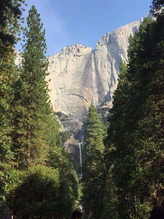 Lower Yosemite Fall Trail National Park All