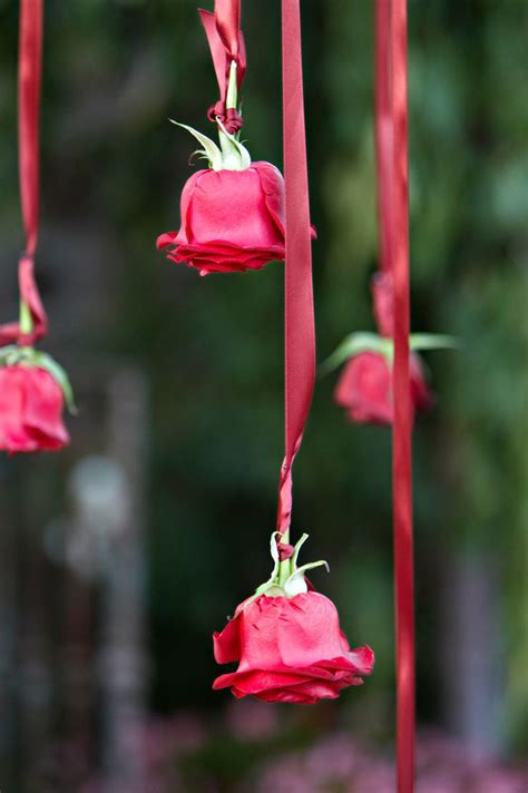 25 Best Ideas About Red Rose Wedding On Pinterest Red