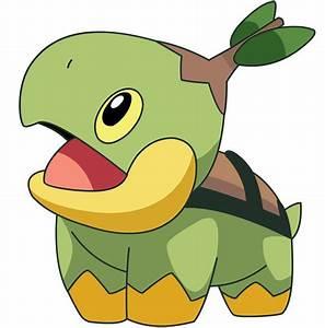 "8 5"" POKEMON TURTWIG ANIME CHARACTER BIRTHDAY WALL DECOR"