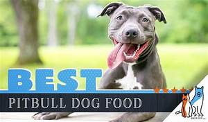 15 Best Dog Foods For American Pitbull Terriers Our 2020