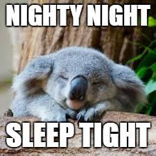 Meme Generator Koala - sleepy koala meme generator imgflip memes i ve made pinterest