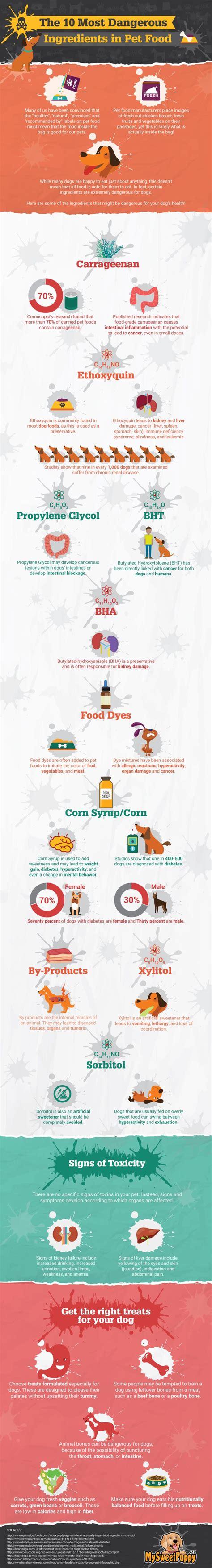 dangerous ingredients  pet food infographic