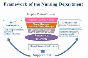 Hospital Organizational Chart Introduction To The Nursing Department Nursing At St