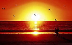 Sunset At Romantic Beach Wallpapers 2560x1600 ...