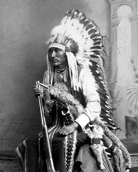 Indian Chief Picture by American Indian Chief Lone Wolf Glossy 8x10 Photo