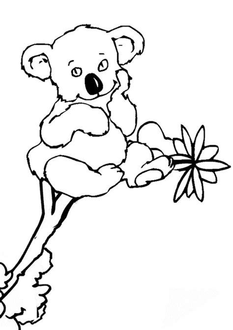 printable koala coloring pages  kids