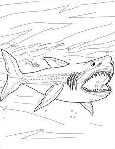 How To Draw Megalodon Megalodon Shark Step By Step