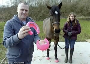 Crocs for horses: Plastic slip-on hooves that making ...