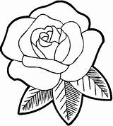 Outline Rose Drawing Coloring Pages Clipartix sketch template