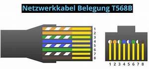 Lan Kabel Belegung : netzwerkkabel belegung kategorien cat und crimpen ~ A.2002-acura-tl-radio.info Haus und Dekorationen