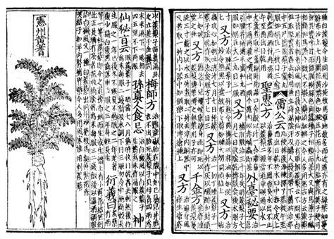 filepen tsao woodblock book  cepng wikimedia commons