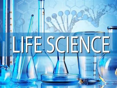 Science Purpose Write Phd Statement Application