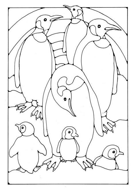 malvorlage pinguine ausmalbild