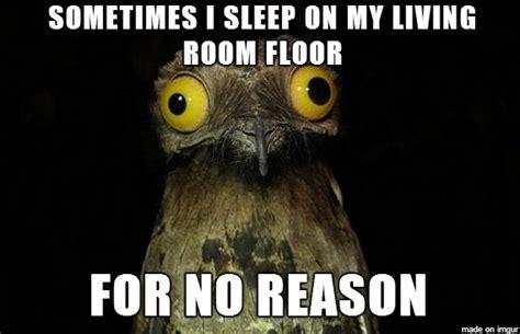 Potoo Meme - weird stuff i do potoo know your meme