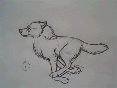 Wolf Drawings Running Animation Drawing Sketches Sketch