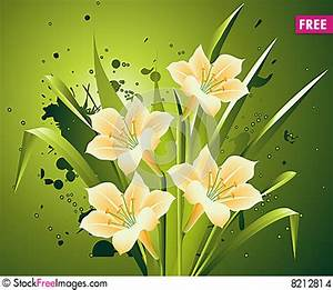 Spring Flowers - Free Stock Photos & Images - 8212814