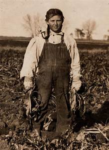 Young turnip picker. | Women and Children in History ...