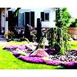 Wonderful Green Landscaping Ideas For Front Yard Flower ...