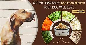Top 20 healthy homemade dog food recipes your dog will