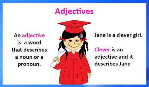 adjectives definition types examples  worksheets