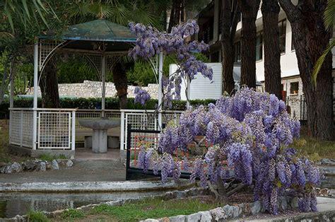 Vacanza Pietra Ligure by Pietra Ligure Estate Vacanza
