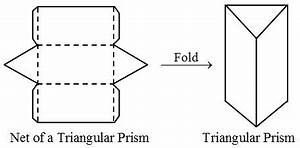 What is meant by the Net of a Solid? - A Plus Topper