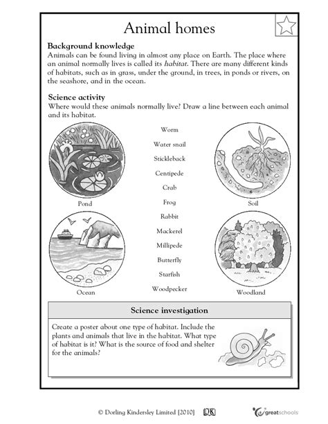 worksheet animal habitats worksheets grass fedjp