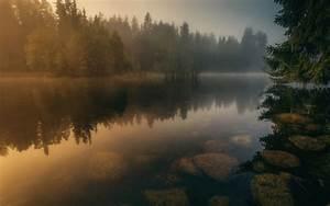 nature, , landscape, , river, , calm, , water, , mist, , forest, , sunrise, , finland, , stones, , trees, , reflection