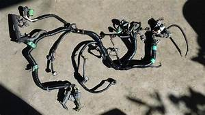 Buy 92 93 94 95 Honda Civic Ex Del Sol D16z6 Vtec Wiring