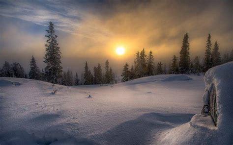 Landscape, Nature, Winter, Snow, Forest, Frost, Sun, Mist