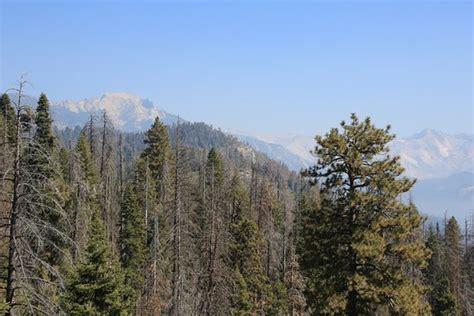 Moro Rock (parque Nacional Sequoia Y Kings Canyon)