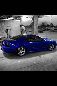 New edge mustang | Buying A New Car | Pinterest | Mustang, Cars and Ford