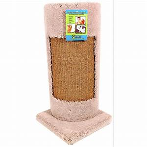 furniture protector cat scratch cat supplies gregrobert With furniture protector from cats