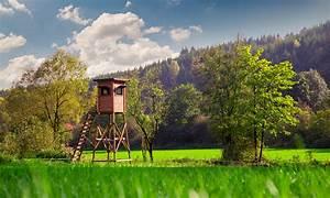 Holz Und Raum : holz und raum david bock marketing design ~ A.2002-acura-tl-radio.info Haus und Dekorationen