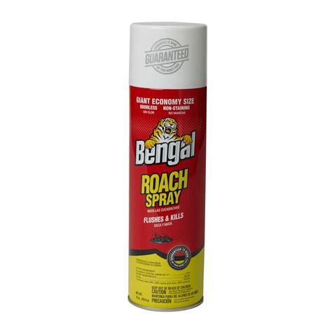 spider spray safer brand flying insect killer poison free aerosol 5710 the home depot