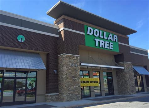 Dollar Tree Opens New Store Near Rockvale Outlets  Local