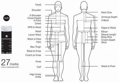 Tape Fashionary Measurements Measure Measurement Chart Sewing