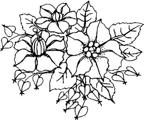 fruehlingsblumen malvorlagen kostenlos zum ausdrucken