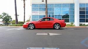 2003 Ford TERMINATOR [SVT Mustang Cobra] For Sale | Los Angeles California