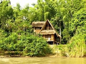 Ecuador Viajes Selva Alto Napo: Cotococha Lodge
