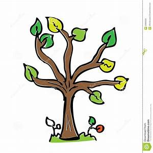 Cartoon Drawing Tree With Color Royalty Free Stock Image ...