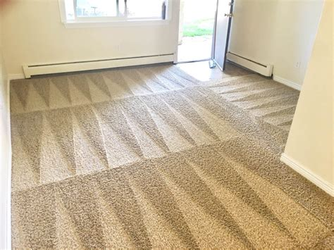 steam cleaning floor care services fort collins co