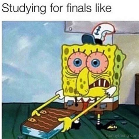 Studying For Finals Meme - 20 funniest spongebob memes every fan needs to see sayingimages com