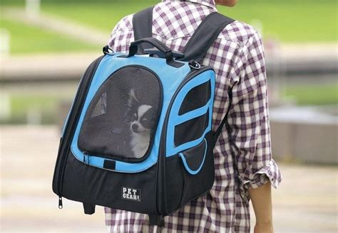 backpack  carry dogs bring  dog  anytime